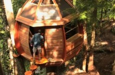 VIDEO: Squatter's secret treehouse in danger