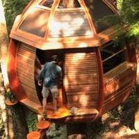 VIDEO: Squatter's secret treehouse in danger