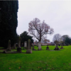 Double Take: The hidden Dublin graveyard that's more than 1,000 years old