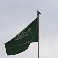 Trump says Saudi explanation of death of journalist Khashoggi is credible