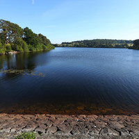 Raw sewage from 38 towns and villages flowing into our environment, report says
