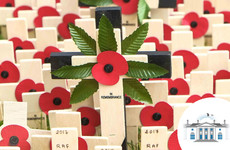 Poll: Would you wear a poppy on Armistice day?