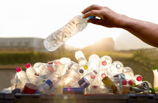 'Perhaps we are wrong': Government to examine bottle deposit scheme 'afresh'
