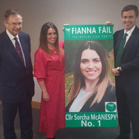FF's deputy leader says it was 'premature' for McAnespy to be told she would be a candidate in NI elections