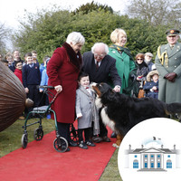 Even the President's pets got dragged into the campaign - but an expert reckons they're an ideal dog for the Áras