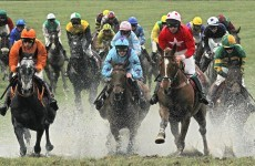 Mark Your Card: your best bets for Day 4 at Punchestown