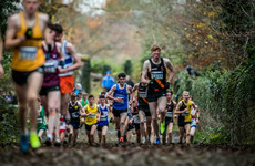 Boost for Irish athletics as Dublin wins bid to host European Cross Country