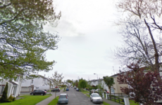 Woman (70s) dies after being hit by truck in Dundalk
