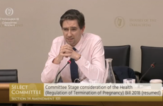 'I find it extraordinarily distasteful': Proposed amendment requiring post-abortion burials voted down