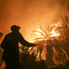 Nine die in California wildfires as tens of thousands forced to flee