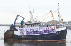 'UK's strongest card is fisheries': Fish sector could be left out of Brexit customs deal