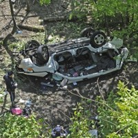 Seven killed as SUV plunges into Bronx Zoo