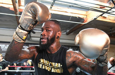 Wilder: Freddie Roach recruitment a sign of Fury nerves
