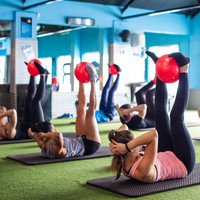 Flyefit's bumper profits highlight the very lucrative business of budget gyms