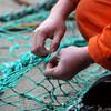 Migrant fishermen 'treated like modern slaves'