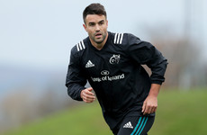 He's back! Conor Murray set for first appearance of the season against Zebre
