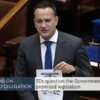 'You're a disgrace': Clashes in the Dáil over medicinal cannabis delay (and Leo breaks Dáil rules)