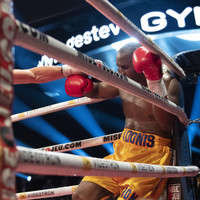 Adonis Stevenson's condition improves 'towards stable' following title fight KO