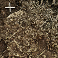 This ancient strain of plague may have aided in wipeout of Neolithic Europeans