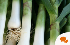 From the Garden: Leeks don't get the recognition they deserve