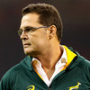 Erasmus expects to leave Springbok head coach role after World Cup