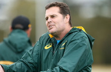 Erasmus to work with Bulls as Springbok coaches assist Super Rugby sides
