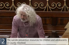 'He's gone and he needn't have been gone': Mick Wallace gives impassioned speech about suicide