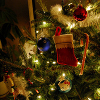 What's the favourite Christmas decoration in your house? 8 people around Ireland share theirs