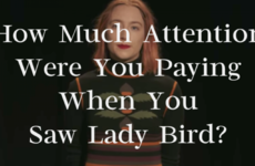 How Much Attention Were You Paying When You Saw Lady Bird?