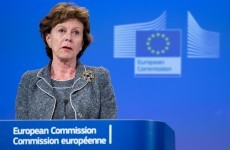 EU digital affairs chief admits controversial ACTA treaty likely to fail