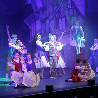 Meet the family who turned the Christmas panto into their business