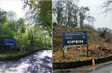 Wildlife group's complaint over destruction of woodland 'disingenuous' claims Department