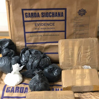 Gardaí seize €500,000 worth of heroin and cocaine at house in south Dublin