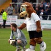 A load of bull: Hereford relegated from Football League despite final day win