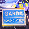 Man dies after being struck by car in Longford