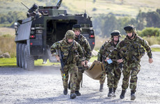 Bomb disposal, prison security, peacekeeping - The work of the Irish Defence Forces in 2018