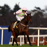 Sharjah and Willie Mullins claim Ryanair Hurdle glory while Delta Work delivers for Gordon Elliott