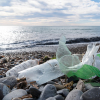 The government is declaring war in 2019 (on single-use plastics)
