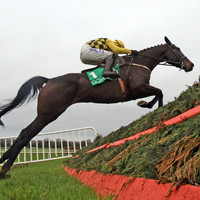Al Boum Photo leads home Mullins 1-2-3 in classy Savills Chase