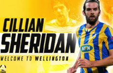 On the move! Irish striker Sheridan signs deal with New Zealand club