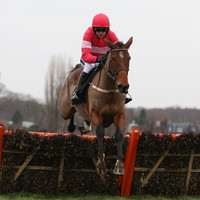 Laurina makes winning return for Willie Mullins to take two-horse race by 48 lengths at Sandown