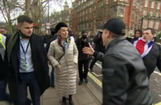 Pro-EU MP Anna Soubry criticises police after group of protesters call her 'Nazi' outside UK parliament