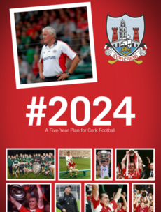 Cork legends recommend key new roles and club changes in five-year football plan