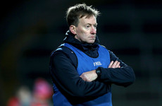 Limerick appoint club senior winning boss as county's new U20 hurling manager