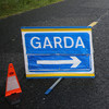 Woman (19) dies after car collides with tree