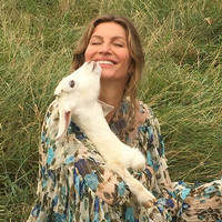 'Bad Brazilian'? Gisele Bündchen doesn't think she is - just a gal looking to save the trees