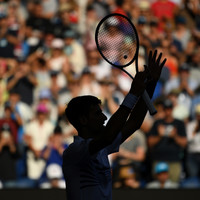 'Agitated' Djokovic regrets meltdown in floodlight fury as Halep sets up Serena showdown