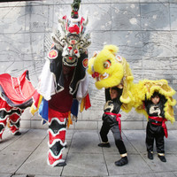 6 family-friendly events not to be missed at the Dublin Chinese New Year Festival