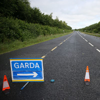 Two people killed in single-vehicle collision in Monaghan