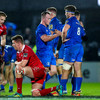 Leinster 'feel like they lost' close shave with Scarlets